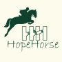 QINGDAO HOPE HORSE TRADE CO., LTD.