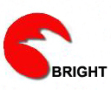 Yancheng Bright New Light Source Co., Ltd.