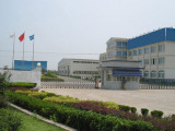Shijiazhuang Woosche Chemical Co., Ltd.