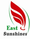 East Sunshines Corp.