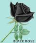 LINYI MARINE INTERNATIONAL TRADE CO., LTD.