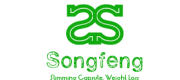 Guangzhou Songfeng Trade Co., Ltd.