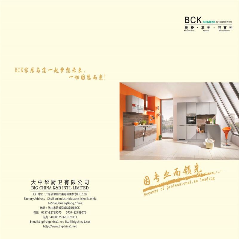 2017 BCK Kitchen Cabinet.Bathroom Cabinet .Wardrobe