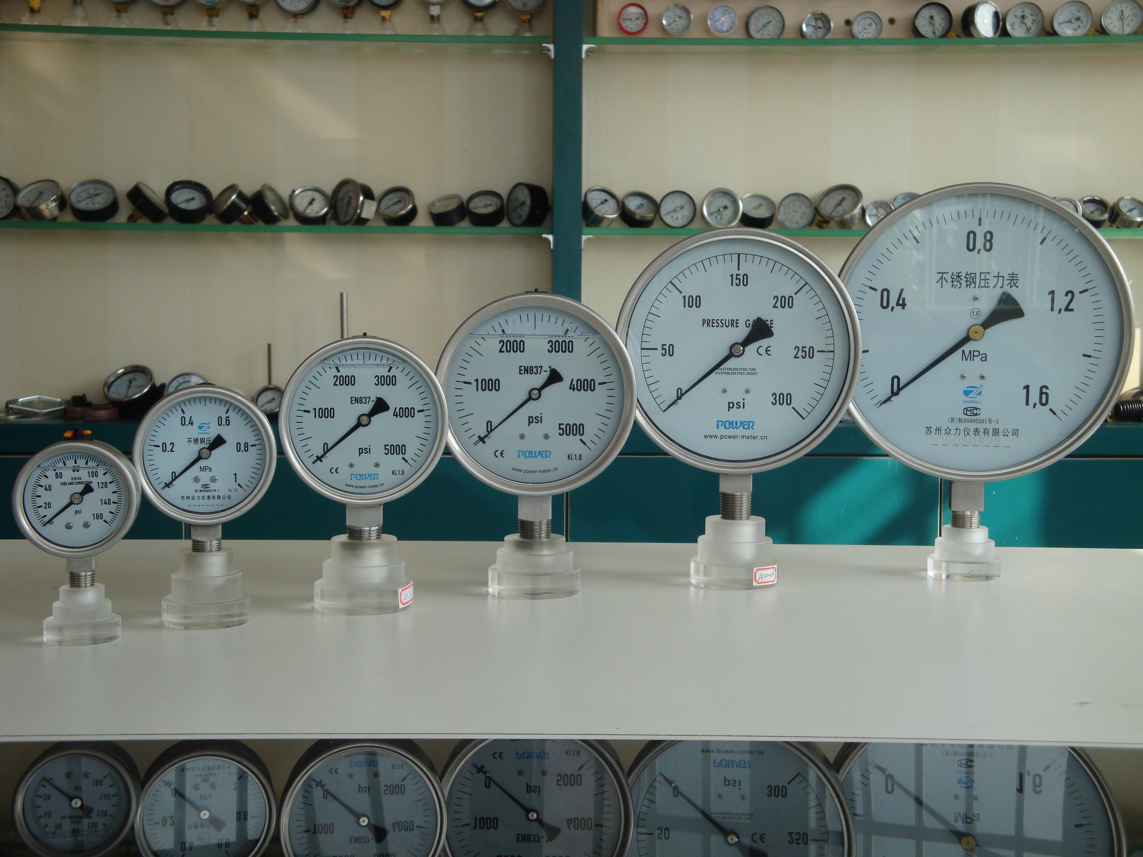YBF model Full Stainless steel Pressure gauges