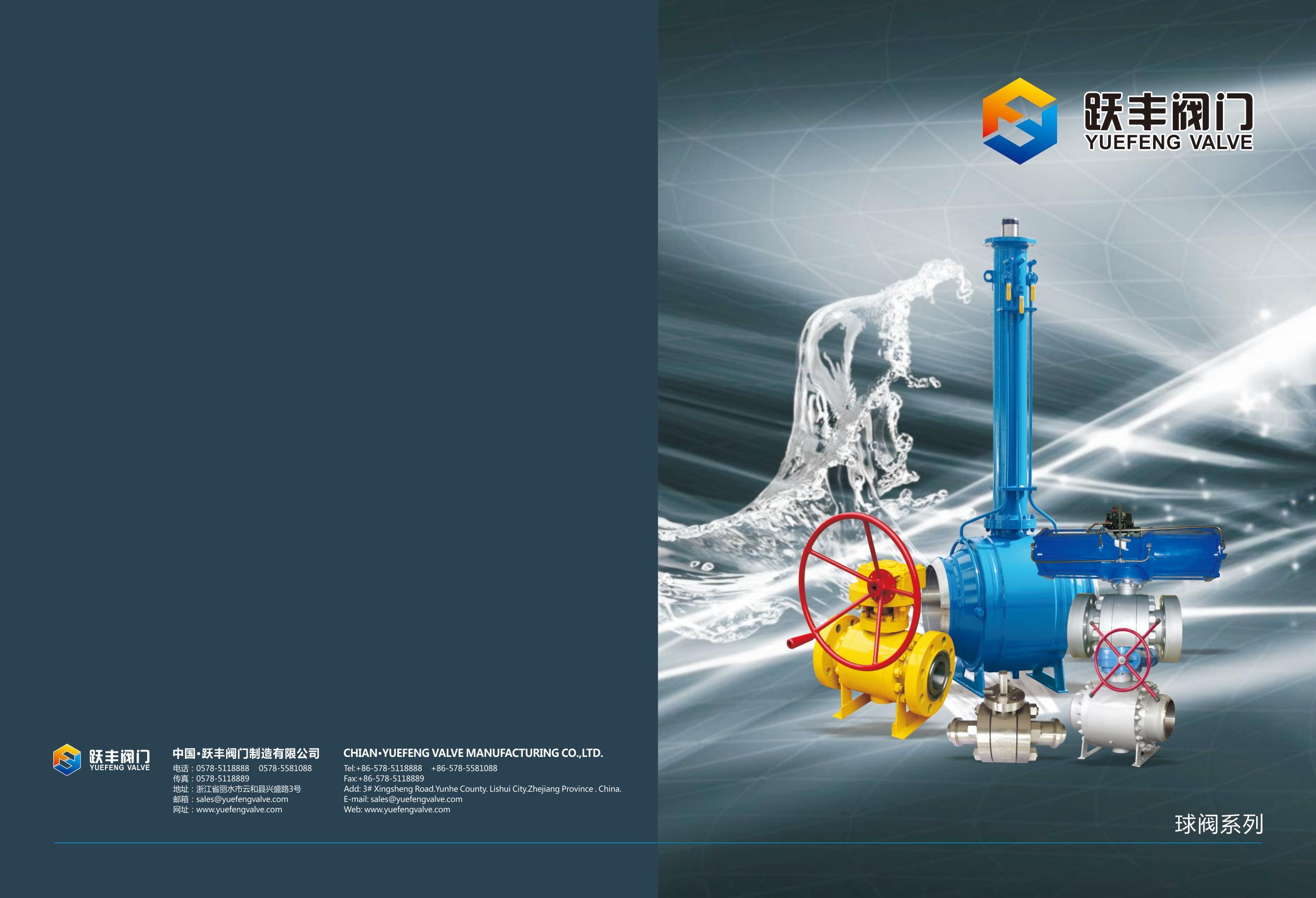 topentry ball valve brochure