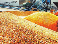 Chinese, US Enterprises Sign Agricultural Transaction Contracts