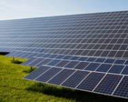 PV Demand Recovers Slowly and Polysilicon Price Continuously Falls: Price Trend