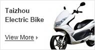 Electric bike industry base