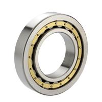 Рядка кольца хромовой стали подшипник ролика Двойн-Ribbed внутреннего одиночного цилиндрический