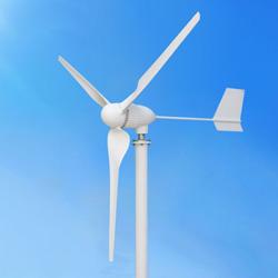 générateur horizontal d'énergie éolienne 300W pour l'usage à la maison (MINI 300W)