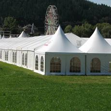 Parasol de Tentes de Pergola de Gazebo de Jardin pour les Événements 10m X10m