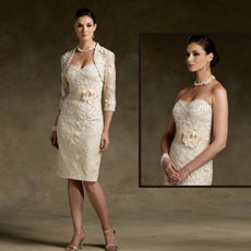 Champagne Mother de The Bride Groom Dress Lace Taffeta Sweetheart Jacket Short Evening Dress N130