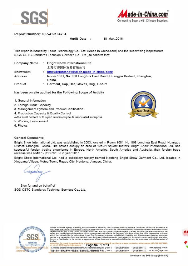 SGS audit report.