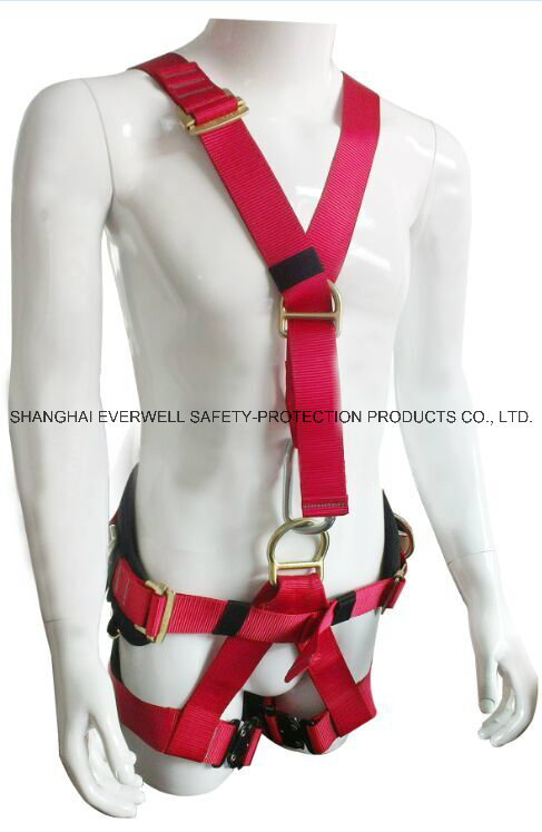 new harness