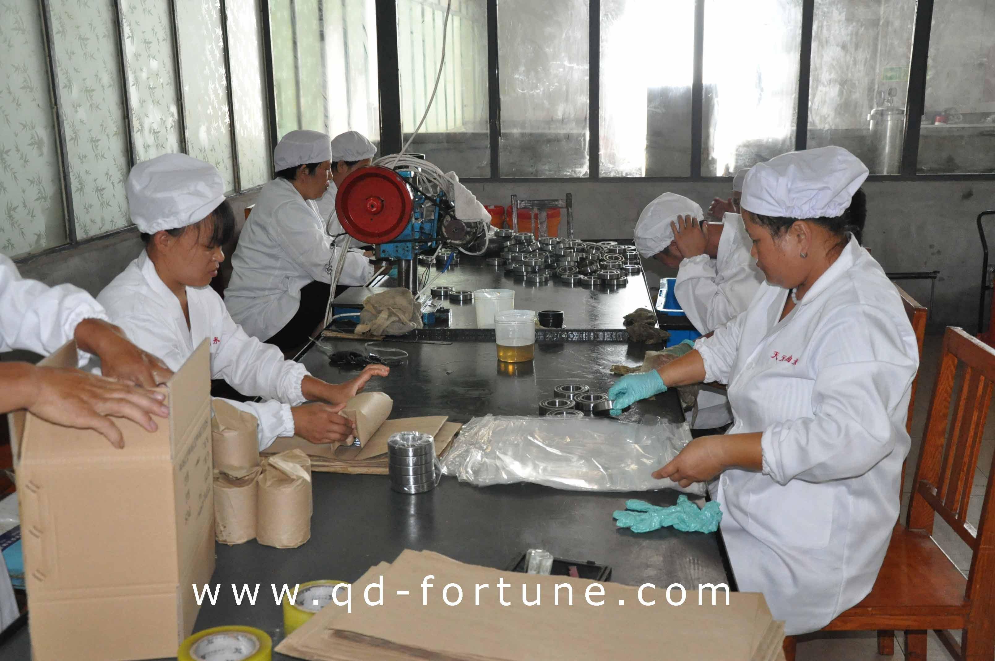 Bearing Workshop