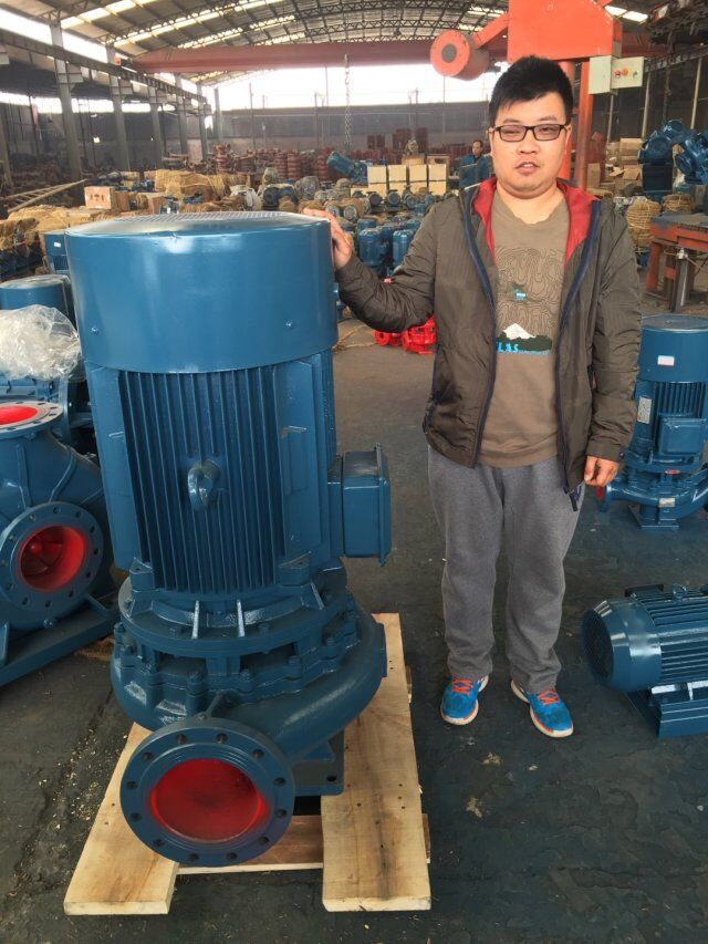 Vertical pipeline centrifugal pumps