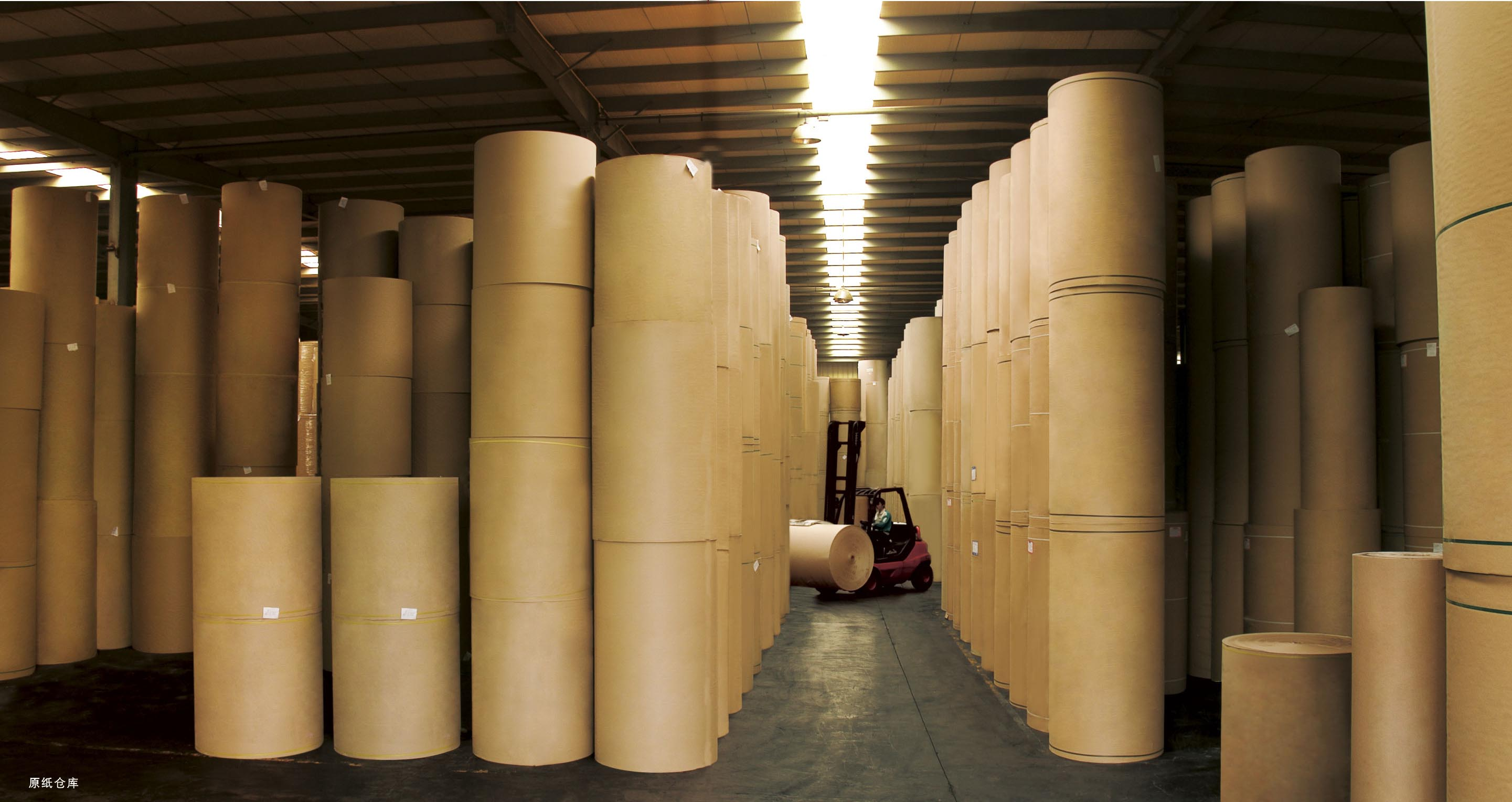 Raw Paper Material Warehouse
