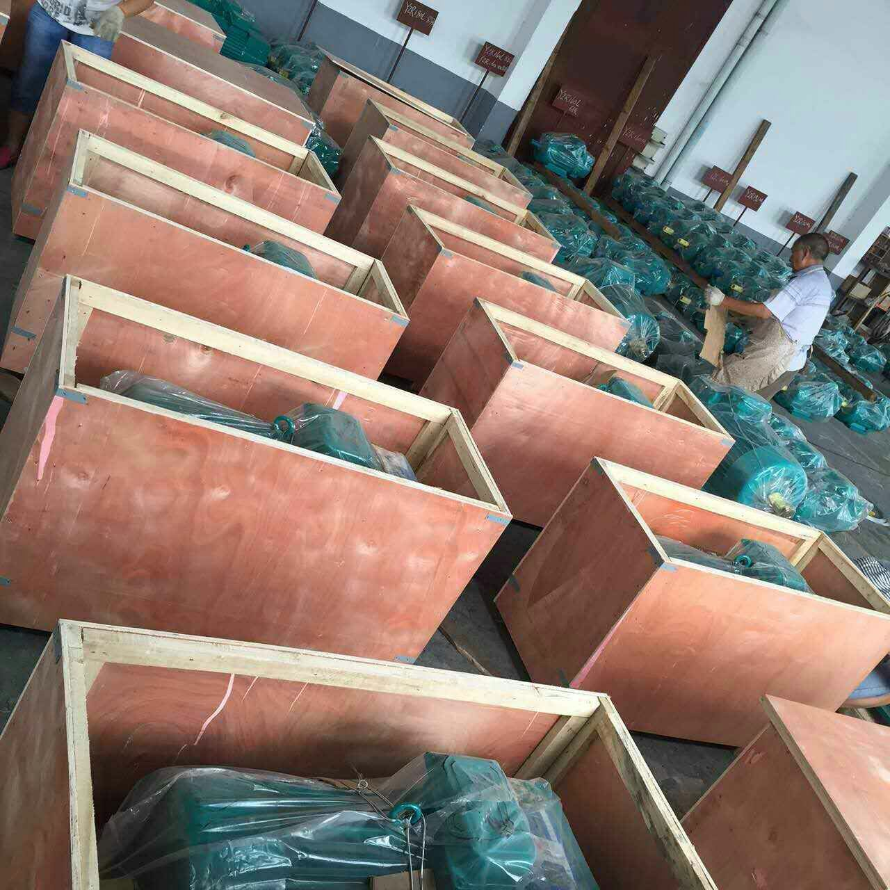 Electric Motor Cargo to Vietnam 20150930