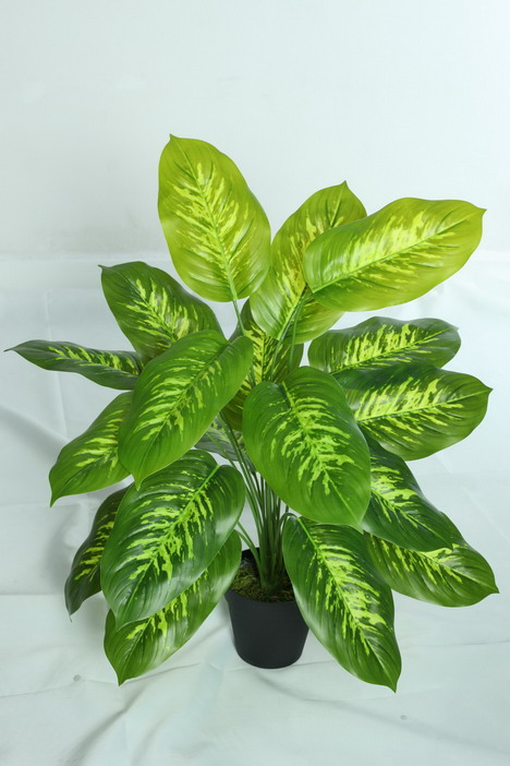 high quality artificial plants of Dieffenbachia