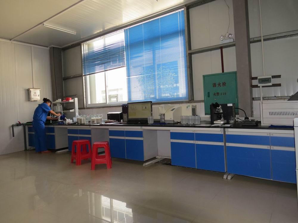 Mica Lab