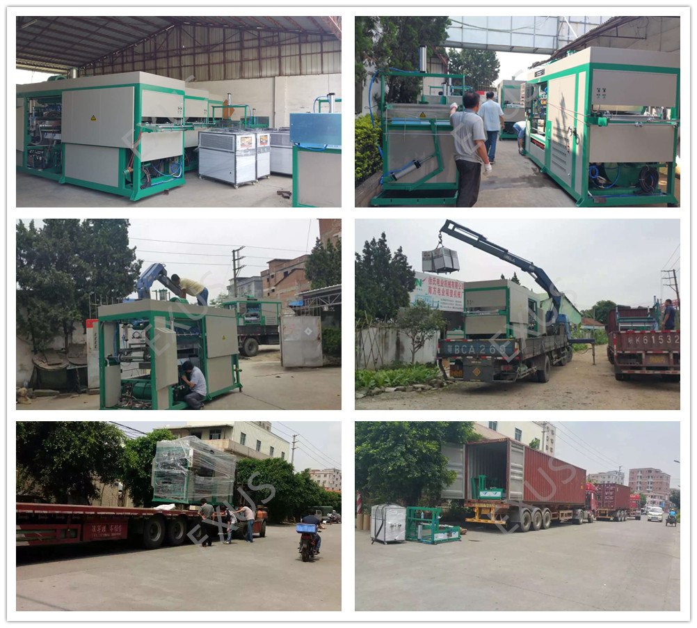 Automatic high speed plastic tray macking forming machine Packing & Loading