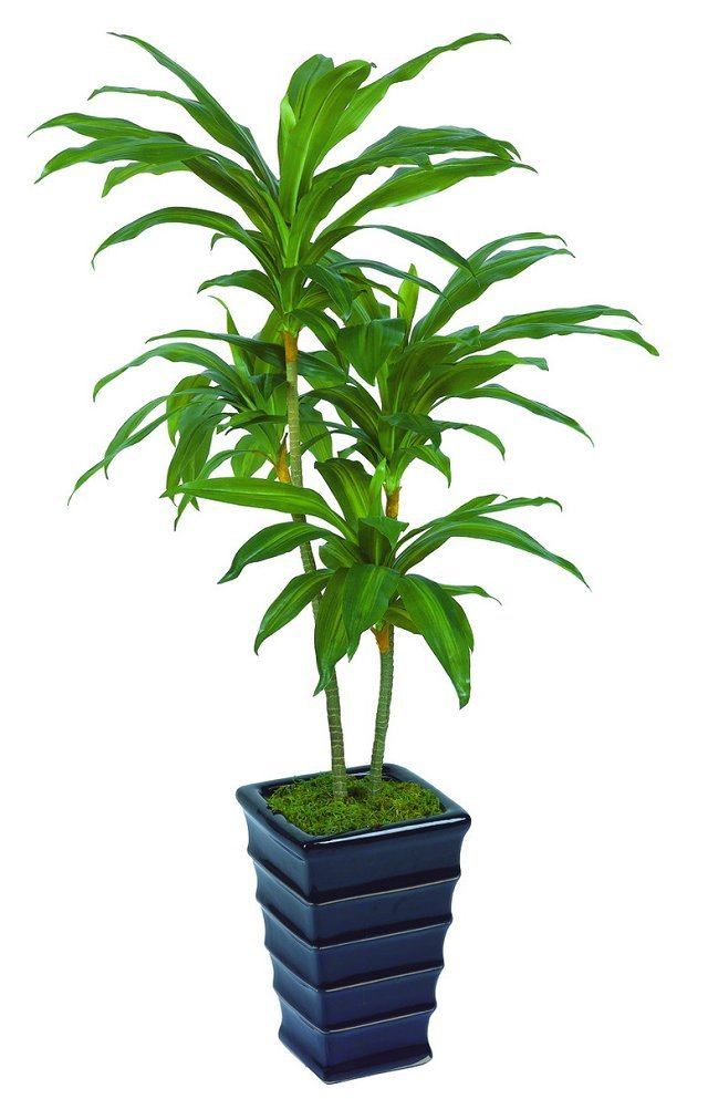 very good selling artificial plants of Dracaena