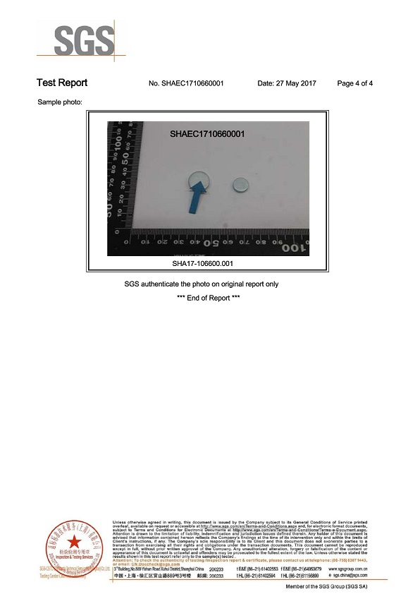 SGS-RoHS report p4