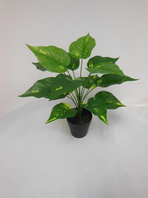 high quality artificial plants of V. Pothos