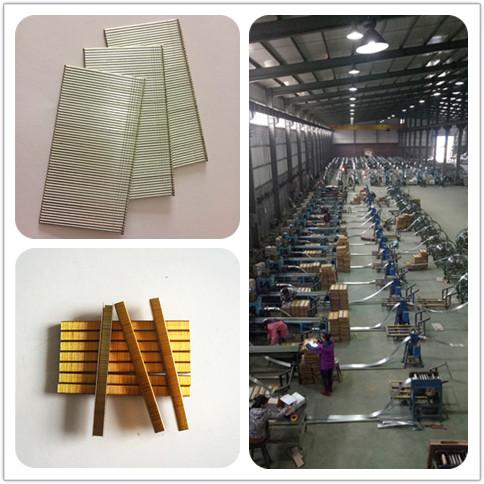 Shanghai SXJ Brad Nail Industry Co.,Ltd