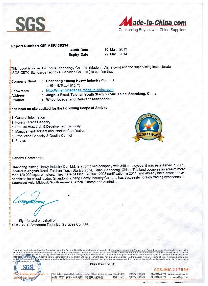 SGS and MIC Report for Yineng