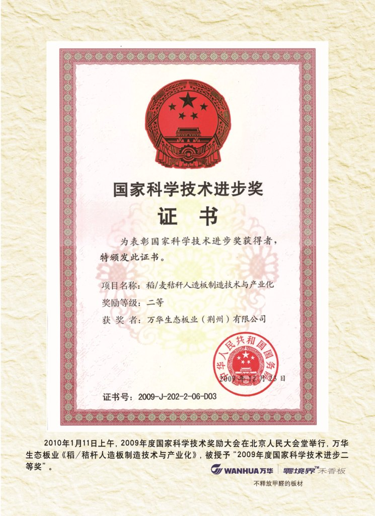 China Top Science and Technology Second Award