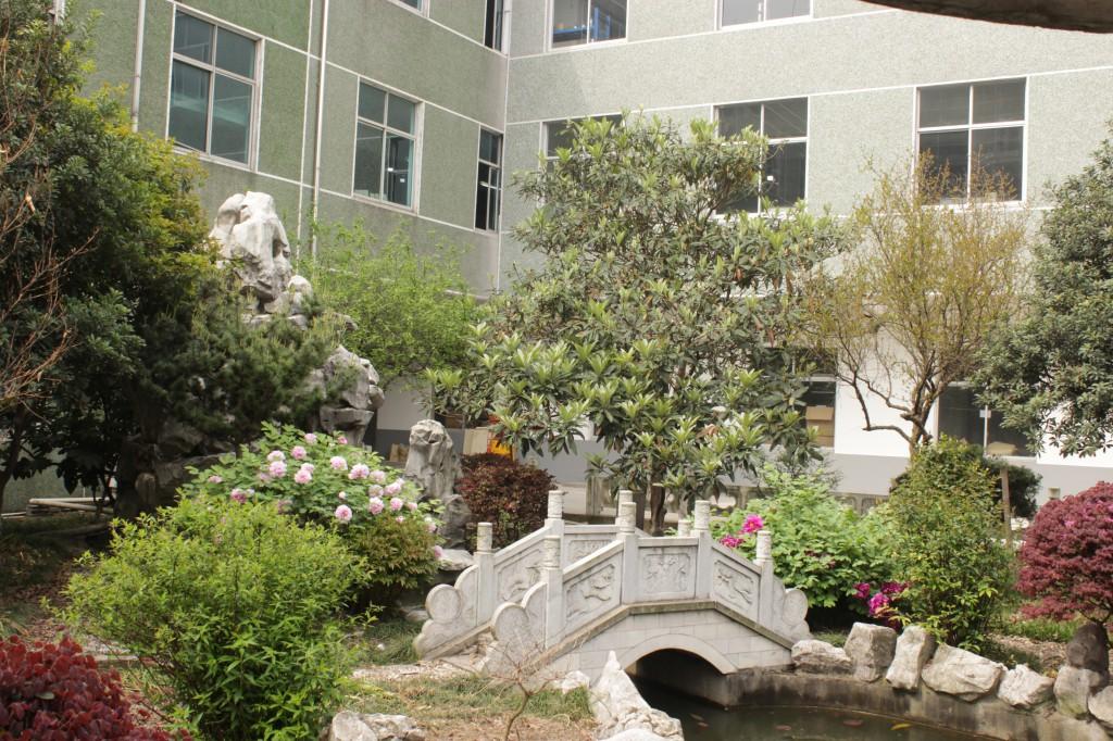 A corner of company's garden