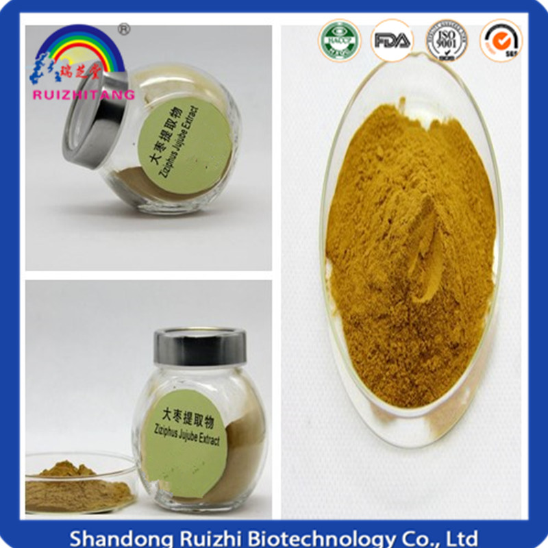 Chinese Company dried Red jujube Powder high quality