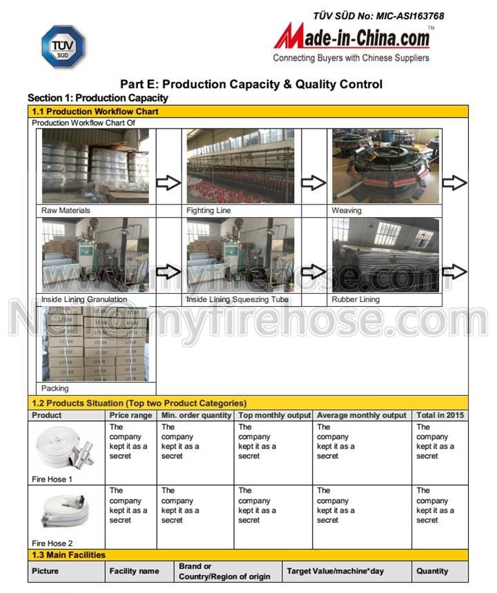 TUV Supplier Assessment Report-2