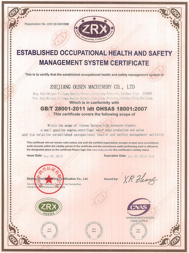 established occupational health and safety management system certificate