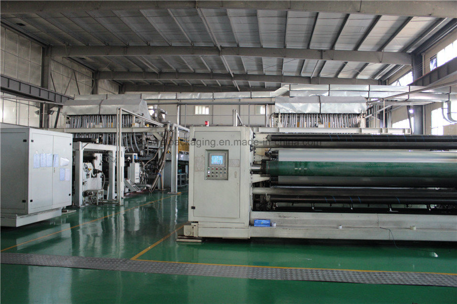 the four- layers extruding machines in DEwei