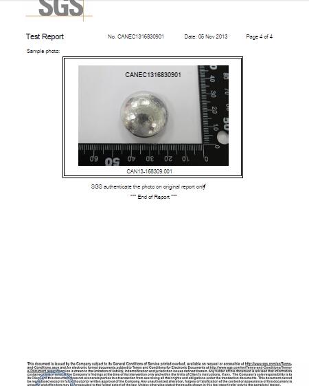 Raw material SGS audit report