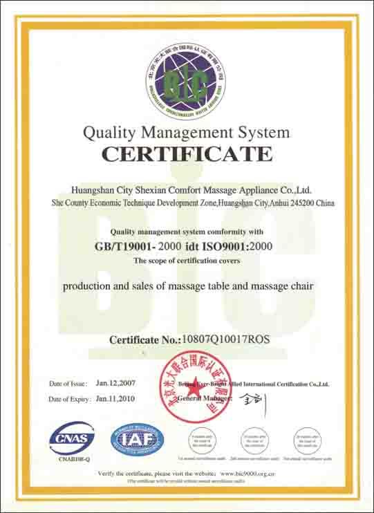 company certificate sample
