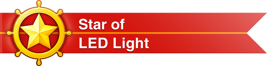 We are Outstanding Partner of LED Light on Made-in-China.com