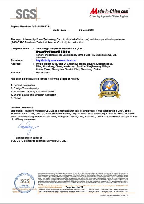 SGS--Supplier assessment report