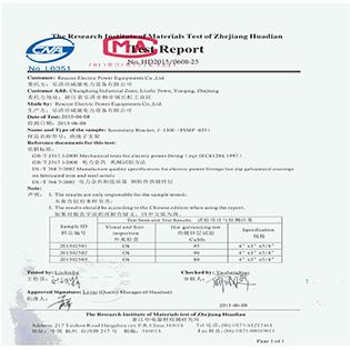 Test Report 17