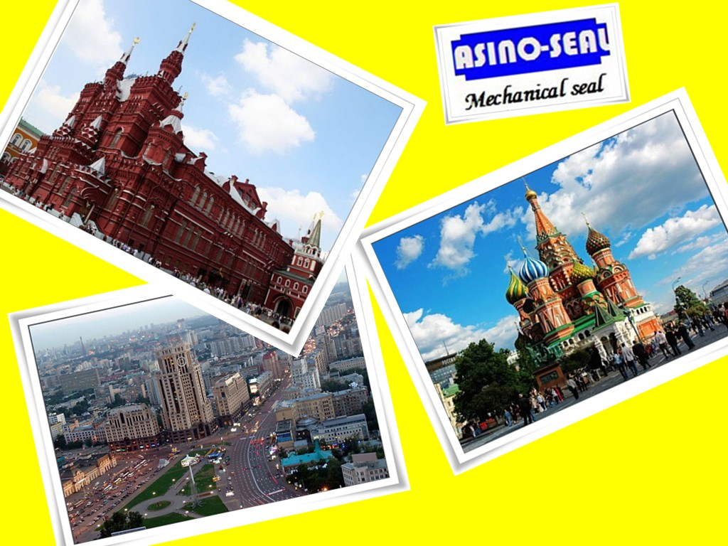 Shall we meet in Moscow at 25th Oct-27th Oct for the Exhbition for pumps?