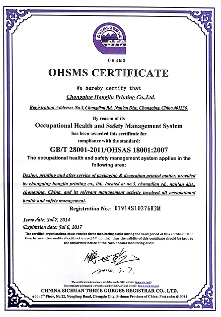 OHSAS18001:2007 OCCUPATION HEALTH SAFETY MANAGEMENT SYSTEM