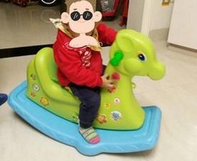 Customer Cases-babay rocking horse