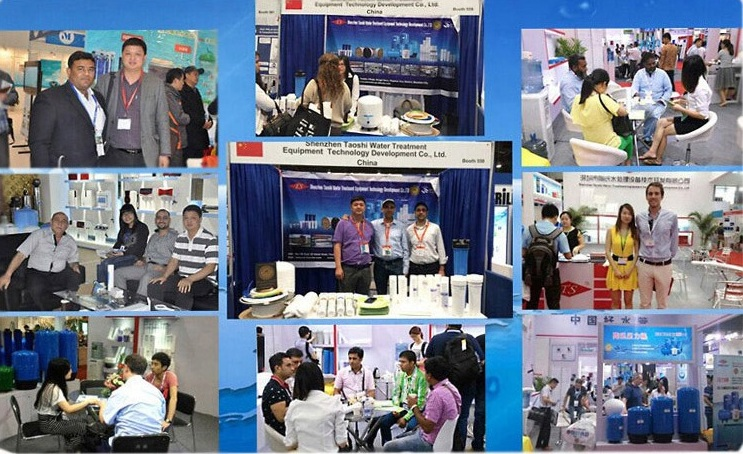 Exhibition Activity