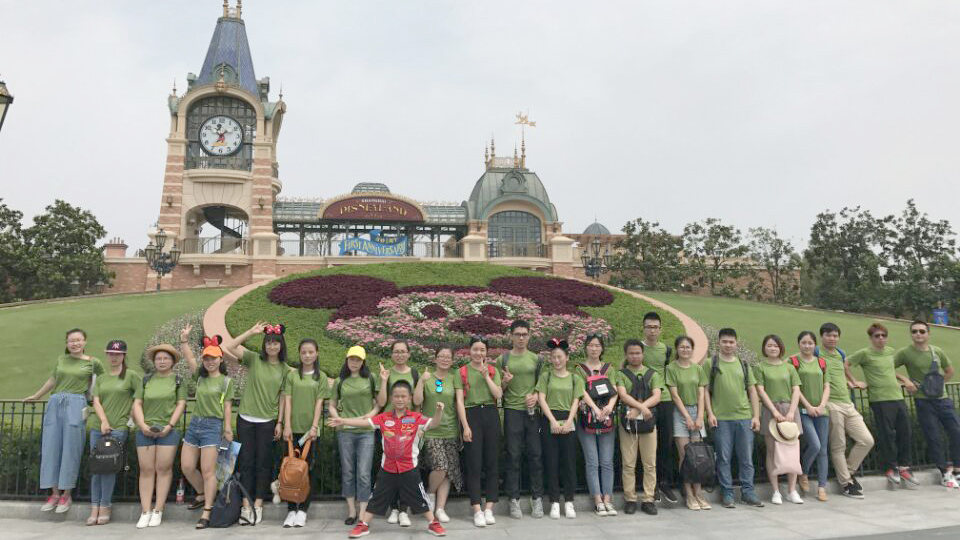 Our team--Disney Magical Journey