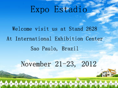 Expo Estadio, 2012