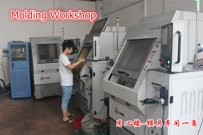 Mould Development Workshop
