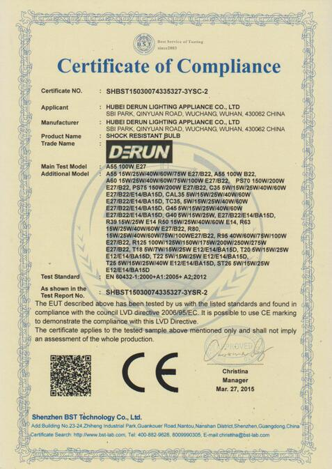 CE CERTIFICATE FOR INCANDESCENT BULB