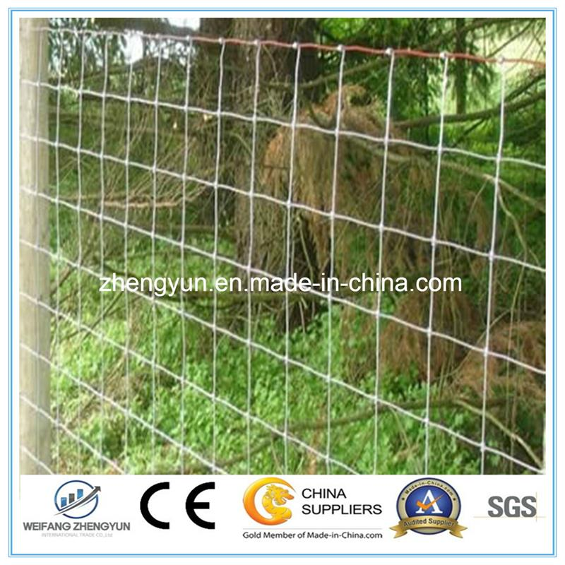 Welded Type Fence/Airport Fence/Security Fence/Construction Road Fence